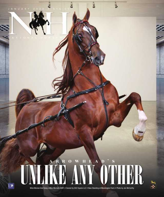 Cover of January-2020 National Horseman Magazine