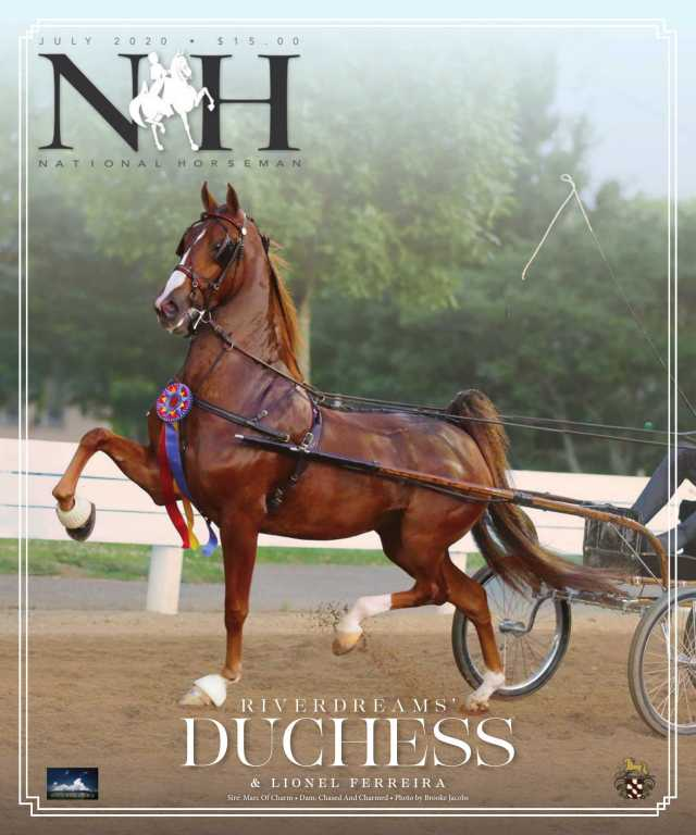 Cover of July-2020 National Horseman Magazine