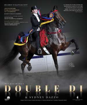 November 2020 National Horseman Advertiser Gallery
