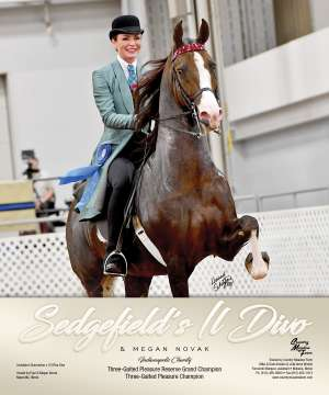 June Extra 2018 National Horseman Advertiser Gallery