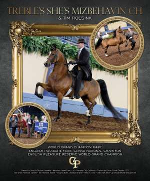 Morgan Grand National 2015 National Horseman Advertiser Gallery