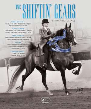 July Extra 2016 National Horseman Advertiser Gallery
