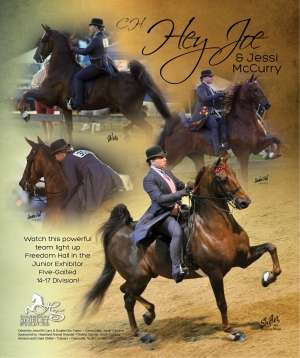 Louisville 2014 National Horseman Advertiser Gallery