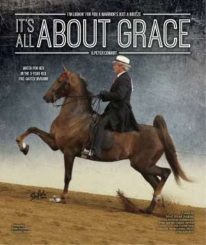 July 2014 National Horseman Advertiser Gallery