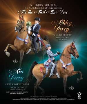 November 2018 National Horseman Advertiser Gallery