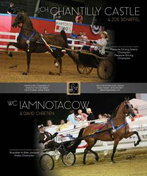 July 2015 National Horseman Advertiser Gallery