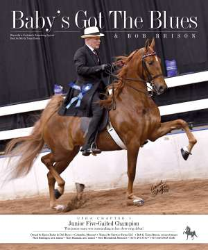 June 2018 National Horseman Advertiser Gallery