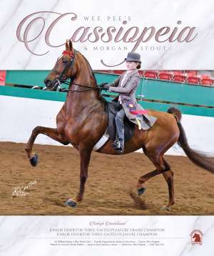 May 2019 National Horseman Advertiser Gallery