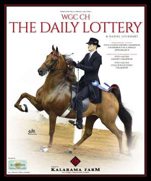 July 2019 National Horseman Advertiser Gallery