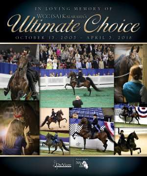 May 2018 National Horseman Advertiser Gallery