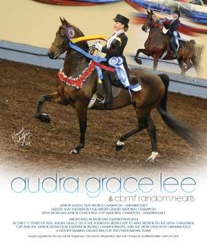 Morgan Grand National 2014 National Horseman Advertiser Gallery