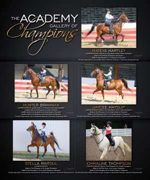 July Extra 2019 National Horseman Advertiser Gallery