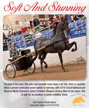 July Extra 2018 National Horseman Advertiser Gallery