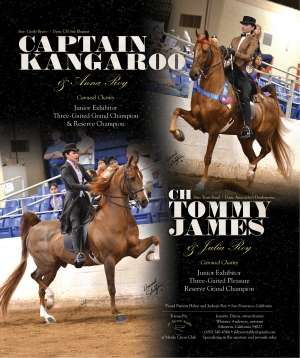 April 2014 National Horseman Advertiser Gallery