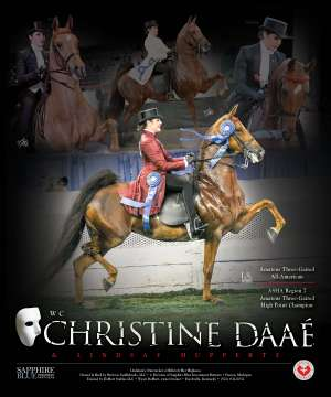 Christine Daae Saddlebred