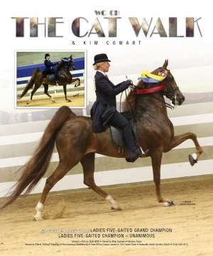 The Cat Walk Saddlebred